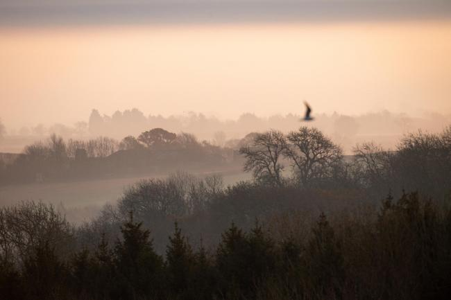 A morning over Burton Dassett Hills Country Park in Warwickshire