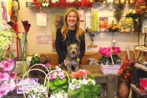 Kipper has blossomed since being adopted by Prestwich florist Rachel Williamson